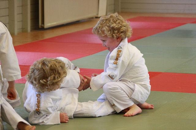 Mini judo